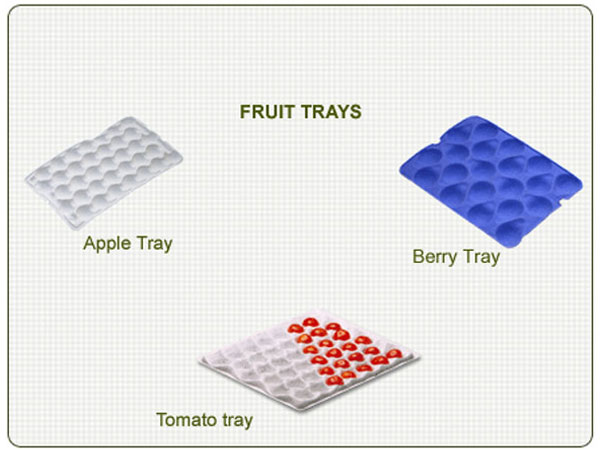 apple tray production line application
