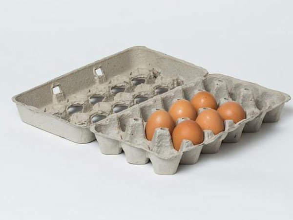 egg carton production line application