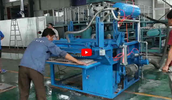 Manual Egg Tray Production Line